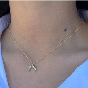 Jewelry - Dainty Simulated Diamond Micro Pave Horn Necklace